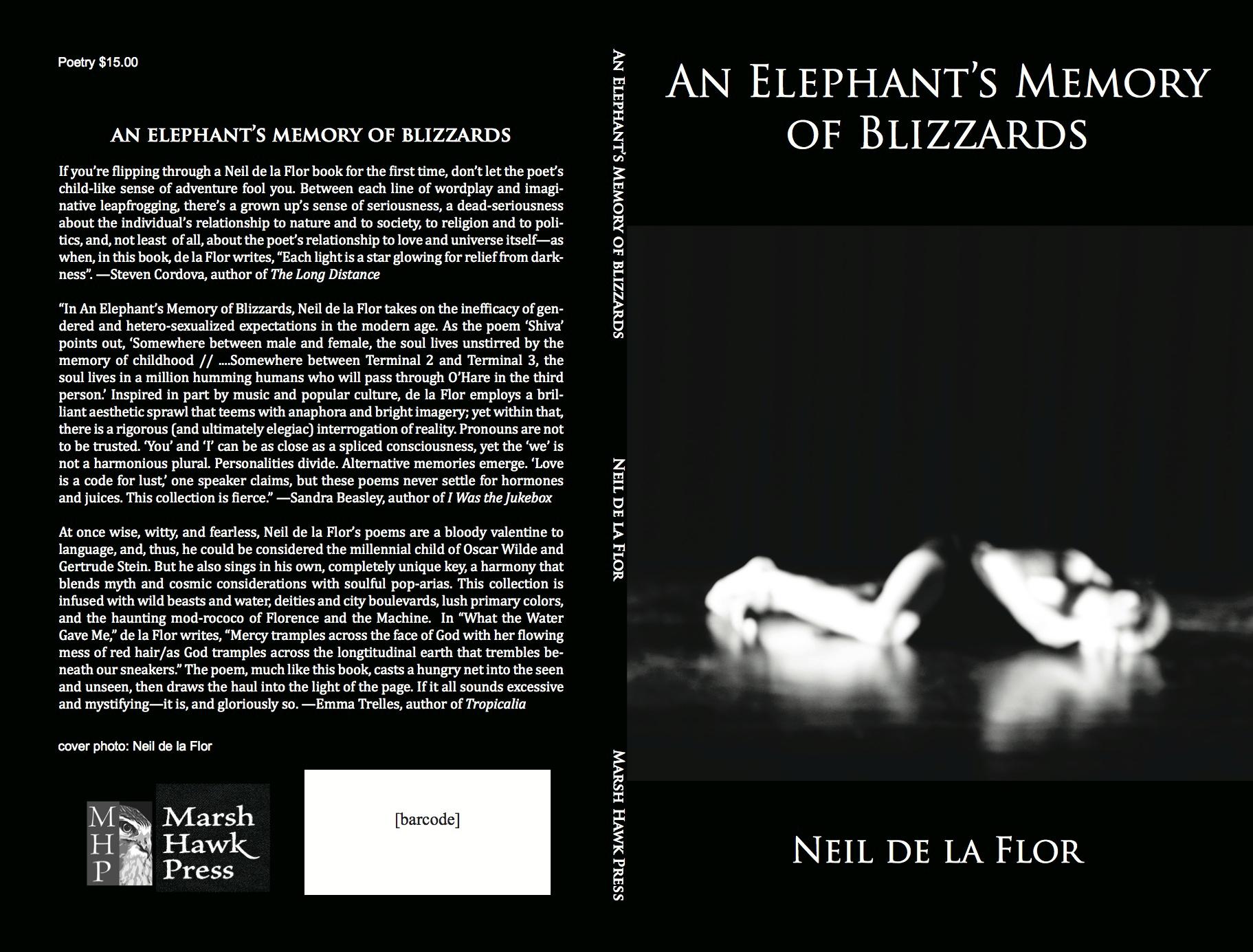 an elephants memory of blizzards neil delaflor.png